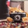 A摄影师摄像师HLiang