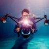 大想-水下摄影